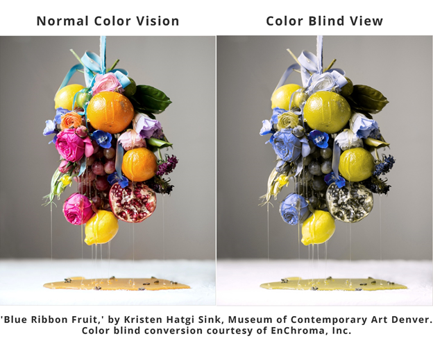 An assortment of colorful fruit hang by a ribbon. The image is duplicated twice, one to simulate color blind vision, the other shows normal colorvision.