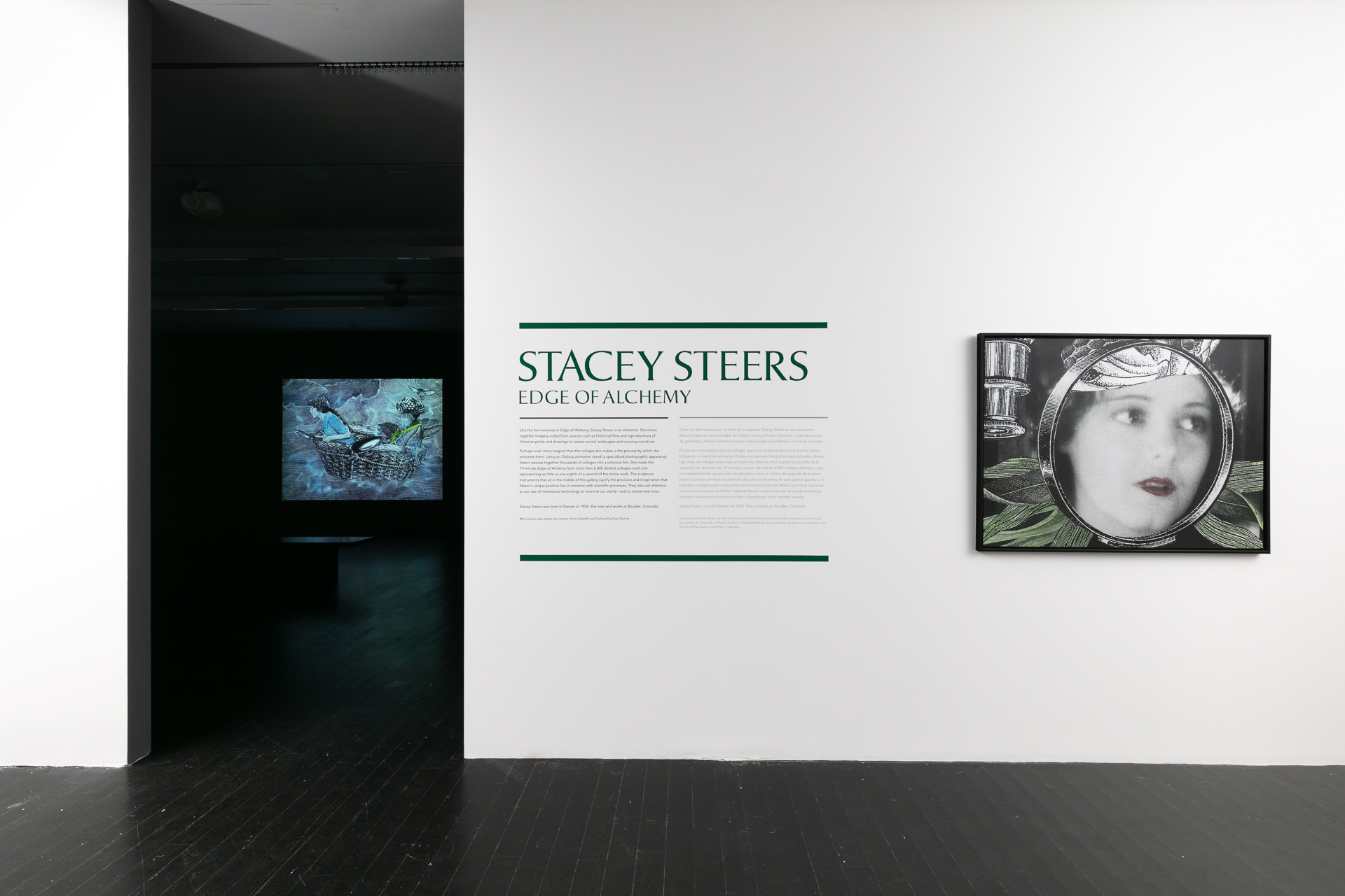 STACEY STEERS IN CONVERSATION WITH ZOE LARKINS