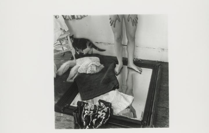 FRANCESCA WOODMAN PROGRAMS